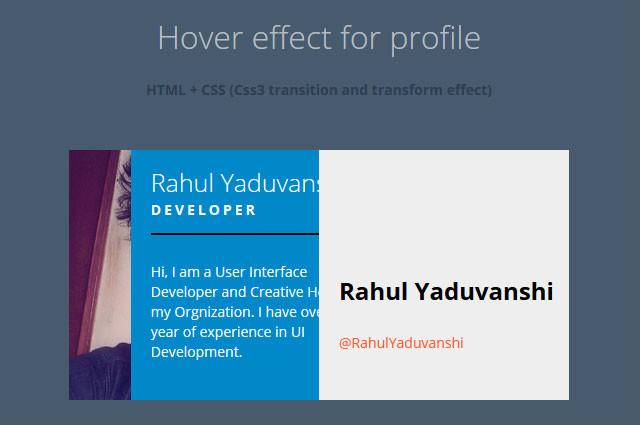 Profile View effect on hover using css3 Transform and